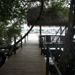 Photo of Bocas Island Lodge