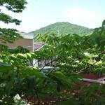 Photo of One price hotel at Shinyu