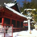 See Nikko's famous temples