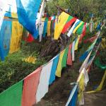 Prayer flags in the wood