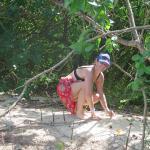 on participe au reboisement de la mangrove