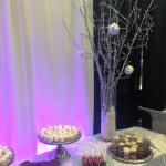 Crowne Plaza Rocky Mountain Bridal Show Booth