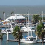 Foto de Holiday Inn Corpus Christi Downtown Marina