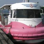 Foto de Semisubmersible Underwater Cruise Ship