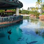 Photo of Lagoon Bar & Grill - Atlantis