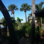 view towards the lagoon