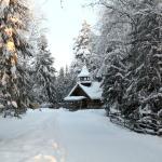 Малые Корелы зимой