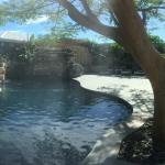 Panoramic View of Oasis Pool & Salt Water Hot Plunge