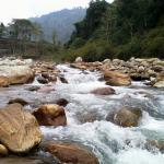 River Jaldhaka