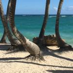 plage du dominicana