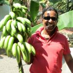 Charles the manager with bananas from the hotel garden