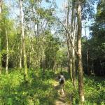 Starting trekk route