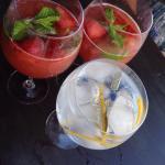 Sangria de morangos e Gin