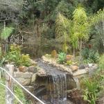 Reserva Ambiental Serelepe