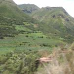 green scenery towards the lodge