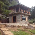 New cottage kithul/Siyambala