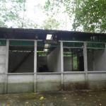 An abandoned building in the jungle