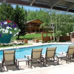 Patio House Pool