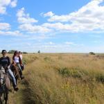 Esperanza Riding Company - Martha's Vineyard