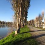 walk or drive around the lake