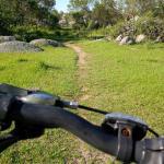 mountain bike in the pampa