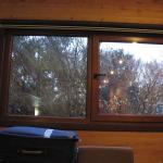 janela do apto 201
