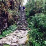 Inca trail(3rd day)