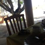 Bird was there waiting for eating your breakfast