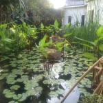 Gardens @ Amatao