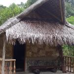 Le grand bungalow avec douche & toilettes