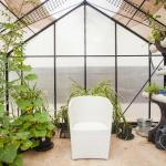 One of a Kind Apartment's greenhouse