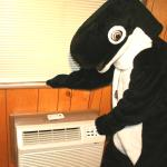 Unlike many hotels on San Juan Island, every room at The Orca Inn has heat/air conditioning!