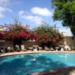 Swimming Pool met Zon en Schaduw