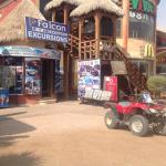 Falcon Adventure Sharm - Day Tour Excursions