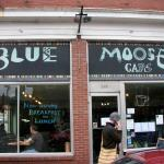 Photo of The Blue Moose Cafe