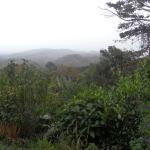 Vista del paisaje alrededor del hotel