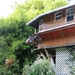 cottage dans le muscadier