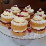 Raspberry & Vanilla Cream Sophies