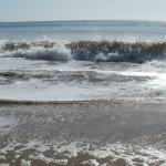 Vendeen Beaches