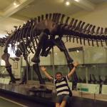 Era dos dinosauros!