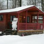 Allegheny Cabin in Winter - Sleeps 6