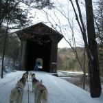 Covered bridge on the trail along the river