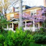 Sweet Biscuit Inn in Spring