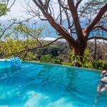 Gumbo Limbo's beautiful infinity pool