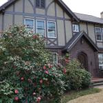 The Tudor-style house is beautiful, but an unusual design for the area.