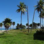 Foto de Parque El Salado