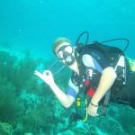 de mooie onderwaterwereld van bonaire