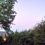 El patio a las 22hs