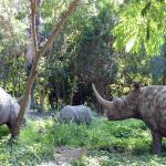 Rhino Figuren am Eingang