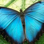 Stunning natural beauty